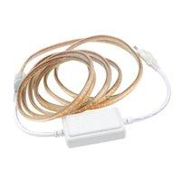 Bande RGB 220V Flexible Waterbon Fiche d'alimentation avec contrôleur 120leds / m LEDStrip Blanc clair / Blanc chaud JQ Strips LED