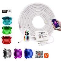Strips WIFI Control RGB Neon Strip Light Lamp Waterproof 2835 White  Warm Flexible LED Rope EU UK AU 220V US 110V