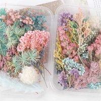 1 caja de flores secas reales plantas secas para la vela de aromaterapia con resina de la resina colgante colgante de la joyería de fabricación de accesorios de bricolaje 776 R2