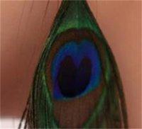 Ретро Национальный стиль роскошный павлин перо серьги пера цветные дикие серьги мода Trend 198 T2