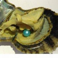 Moda Pérola Natural 6-7mm Pérola Redonda Em Ostras Akoya Oyster Shell Com Colouful Pearls Jewelry por vácuo Packed 10 PCS Lot Farm Fonte