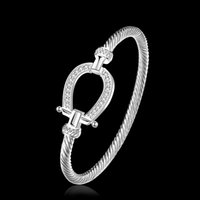 Bangle Bracelets Kinitial Charm Horse Shoe Bangles Smooth Steel Twisted Wire Bracelet Germanium Accessories for Women Cuff