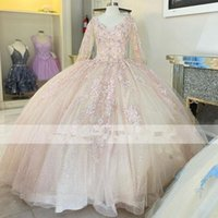 Blue and Pink Princess Quinceanera Dresses 2021 Lace Appliqued Scoop Lace-up Corset Back Prom Sweet 16 Dress