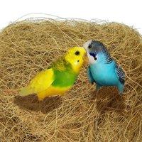 Autres fournisseurs d'oiseaux 100g Produits BPV105 Fibre de coco naturelle stérilisée Stérilisée pour nid Excellent jouet Nidifiant plus facile Oiseaux Coco Dower