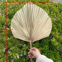 Palm Fan Folha Folha Secada Janela Janela Recepção Festa de Arte Pendurar Decoração Arco do Casamento Arranjo Decorativo Flores Grinaldas