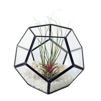 الزجاج الهندسي تررم مكعب اليدوية الزجاج الغراس تررم الحديث كرة القدم شكل الغراس ل الديكور البستنة داخلي