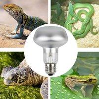 DR80 Pet Heating Lamp 60W 75W 100W Day Light Heater Led Bulbs E27 Farm Lights for Turtle Aquarium Aquatic Reptile