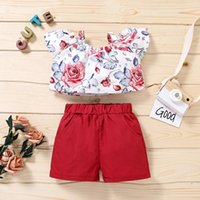 Floral Printed Kids Sets Toddler Baby Girls Clothes Sleeve Tops Shorts Outfits Children's Clothing