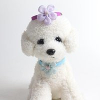Collares de gatos conduce un collar de perro de tela premium compacta minimalista ajustable para cachorros