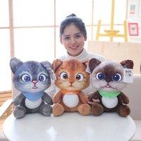 20/30 cm Soft 3D simulazione farcito gatto peluche giocattoli a doppio lato sedile divano cuscino cuscino peluche animale gatto bambole giocattoli regali