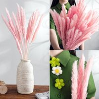 Bulrush Natural Dried Small Pampas Grass Phragmites Fake Plants Flowers For Home Wedding Artificial Decor Bunch Flower Decorative & Wreaths