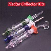 14mm Dab Straw Oil Rigs Micro NC Set Glass Water Pipe Titanium Quartz Tip 45 degree quarz banger nail hand oil burner bong