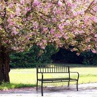 الولايات المتحدة الأسهم حديقة حديقة في الهواء الطلق مقعد البدلاء الفناء الشرفة كرسي خمر الفناء الخلفي مقعد الأثاث الحديد الإطار سهل التجميع