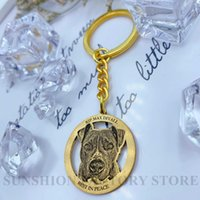 Customize Gold-plated Photo Key Chain Dog Cat Picture Keyring Engraved Pet Photo Keychain Personalized Memorial Gift H0915
