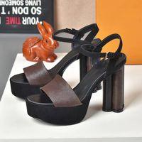Kadınlar Yüksek Topuk Sandalet Alfabe Lady Terlik Klasik Blok Topuklu Platformu Ayak Bileği Kayışı Kadın Ayakkabıları Pompalar Düğün Balo Sandle Kutusu