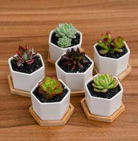 Céramique Bonsaï Pots Mini Publics de fleurs de Porcelaine Blanche Jardin Succulent Jardin Annuaire Planches de pépinières avec châssis Cyz3125