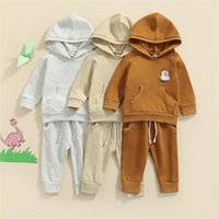 Clothing Sets 0-3Y Infant Baby Girls Boys 2Pcs Clothes Set Long Sleeve Hooded Embroidery Rainbow Pocket Tops Pants Spring Autumn Outfits
