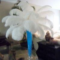 Decoración de la fiesta 60-65 cm / 22-24 pulgadas 10 colores Avestruz Plumaje de plumaje Vestidos de la boda Suministros de regalos