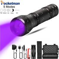 Modi LED UV Ultraviolett Fackel mit Zoomfunktion Mini Black Light Pet Urinflecken Detektor Scorpion Jagd Taschenlampen Fackeln