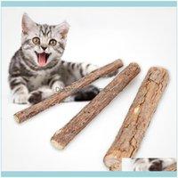Toys Supplies Home & Garden2Pcs 3Pcs Cleaning Teeth Natural Catnip Pet Cat Molar Stick Siervine Matatabi Kitten Sticks Drop Delivery 2021 Ud