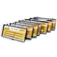 Faux cils 1box capacité 60 paquets 10D EXTENSIONS DE TYELASH 0.1MM ÉPAYS VRAI Veille Couteaux individuels Style naturel