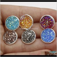 Entrega de gota de jóias 2021 granel 12mm redondo druzy stud study bling drusy resina sier brincos para mulheres senhoras moda lx0384 smwbx