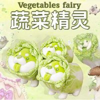 Vegetable elf vegetable dog doll Chine cabbage plush toy net red funny Doll NEW Plush Toy4EOG