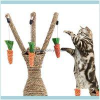 Поставки Главная GARDE1PC PET CAT CEW READ RADISH Котенок Уход за зубами жевательные игрушки Интерактивная Башня Tree Hees Relaint Frame царапания Почтовый автомобиль