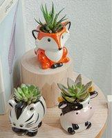 6PCS Set New Cartoon Animals Flower Pot for Succulents Fleshy Plants Flowerpot Ceramic Small Mini Home Garden Office Decoration OWE9852