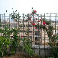 Fencing, Trellis & Gates 50x120cm Climbing Vine Rack Rose Wall Plant Detachable Screen Support Garden Net Flower Vines Pot Stand