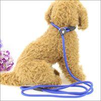 Очастотена для собак Поводки Учебные поводки скольжения ПЭТ собаки нейлоновый веревочный ремешок регулируемый тяговый воротник ZZE5281
