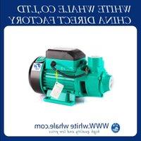 Alta qualità QB60 370W Famiglia Auto-Primering Pressurizzato Acqua solare Acqua di circolazione Pompa elettrica Pompa acqua centrifuga Pompa per acqua Piscina Giardino Wooob
