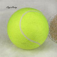 Haustier liefert interaktives spielzeug dog 1 stück 24 cm riesige Tennisball für Haustierkauspielzeug große aufblasbare lieferungen outdoor spielzeug sporty