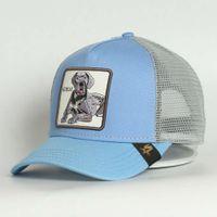 Personalizzato 5 Pannello Animali Famiglia Sky Blue Cotton Great Dog Sports Caps Ricamato Maglia Cappello da camionista per entrambi Cappello da uomo Cappello da donna