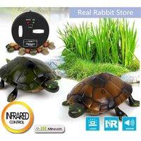 [مضحك] خدعة الإلكترونية الحيوانات الأليفة rc محاكاة الصوت السلحفاة روبوت نموذج المزحة لعبة التحكم عن الحيوانات الذكية الحيوان هدية 210326