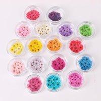 Сухие цветы для ногтей Многоцветные дикие ногти украшения ручной работы натуральные цветочные конструкции