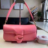 Luxurys Designer Сумки Pilow Seekskin Dionysus Bag New Mini 18 Подушка Bag Tabby26 Облако Элегантная Одно наплевая Сумка CTT