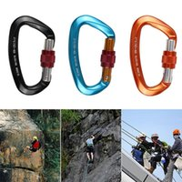 Cords, Slings And Webbing Outdoor Security Rock Climbing D Shaped Mountaineering Caving Buckle Carabiner Hook Master Lock 25KN