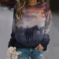 Hoodies Autumn Winter Womens Horse Print Casual Tops Ladies Sweatshirt Roupas Femininas Com Gratis Vintage Clothes Women's T-Shirt