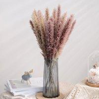 Dekoratif Çiçekler Çelenkler 15 adet 50 cm Gerçek Bitkiler Kurutulmuş Doğal Çim Reed Çiçek Kuru Küçük Bulrush Buket Pampas Reeds Ev Dekorasyon W