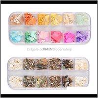 Süslemeleri Salon Sağlık Güzellik1 Kutu 12-Renkli Çiviler Abalone Fragmanları Doğal Kabuk Taş Manikür Denizkızı Glitter Pulları Sparkly Nail Art