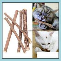 Toys Supplies Home & Garden5Pcs Bag Cleaning Teeth Pure Natural Catnip Pet Molar Tootaste Stick Siervine Actinidia Fruit Matatabi Cat Snacks