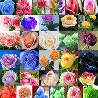 정원 용품 60 PCS / 가방 희귀 블루 핑크 블랙 여러 가지 빛깔의 장미 식물 씨앗 발코니 정원 화분 꽃 씨앗 마당 공급 ZC139