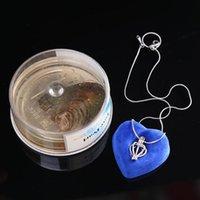 Природные устрицы пожелают пресноводное жемчужное ожерелье подвесной набор женщин мода ювелирные изделия подарок ожерелья
