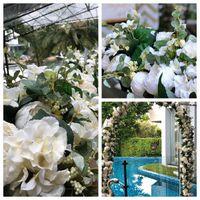 2021 الاصطناعي زهرة الأوروبية منتصف الزهور زهور الزفاف القوس الطريق الرصاص جميع أنواع مختلفة الديكور للمنزل فندق حزب ديكور