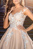 202 Lace Prom Dress Formal Party Pageant Wear Sheath Sleeve-less Evening Dresses Sexy V Neck See Through