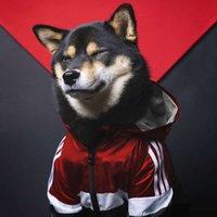 اللوازم العلم الأمريكي المد العلامة التجارية windproof و rainproof ناسا عاكس spacuit كبير المعطف الكلب الحيوانات الأليفة بدلة اعتداء