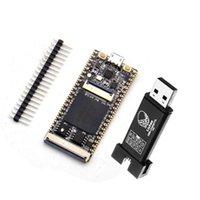 الدوائر المتكاملة 1PCS 64MBIT SDRAM RISC-V تطوير وحدة التنمية MINI PC + FT2232D JTAG USB RV Debugger