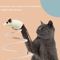 Small Animal Supplies Yili Cat Toy Spring Mouse Pet Self-Entertainment Automatic Teasing Stick Kitten Puppet