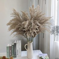 Decorative Flowers & Wreaths Pampas Grass Natural Dried Home Decor Wedding Indie Living Room Decoration Artificial Flower Plant For Party Fe